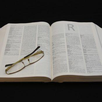 terminología de franquicias