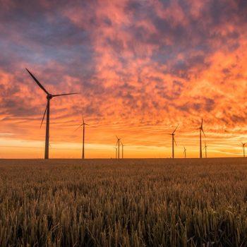 Franquicias en energías renovables y de energías renovables, rentables y productivas