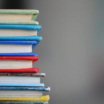 Franquicias de éxito para emprender en el sector de la educación